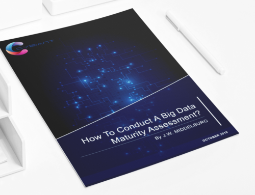 Free White Paper: How to Conduct a Big Data Maturity Assessment