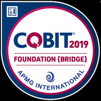 COBIT 2019 Bridge