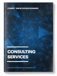 Cybiant Consulting Services